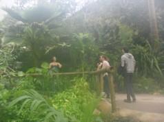 Regnskogen, där luften var så tjock att man knappt kunde andas. Konstig känsla att gå från vanligt Englands-klimat in till en regnskog på samma tid det tar att gå igenom en dörr.